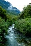 greenstone-creek-2-img_9286-2