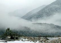 haast-river-snow-img_0583-2